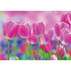 Fotomural Tulipanes Decoas.
