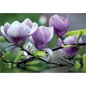 Fotomural magnolias 160 Decoas.
