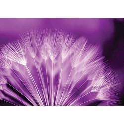Fotomural flor diente de león 257 Decoas.