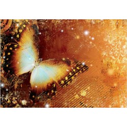 Fotomural Mariposa 173 Decoas.
