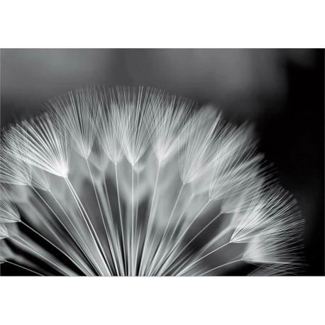Fotomural flor diente de león 292 Decoas.