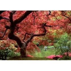 Fotomural jardín 270 Decoas.