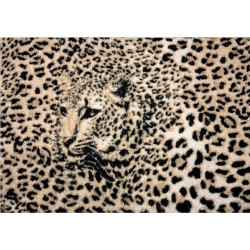 Fotomural 278 pantera Decoas