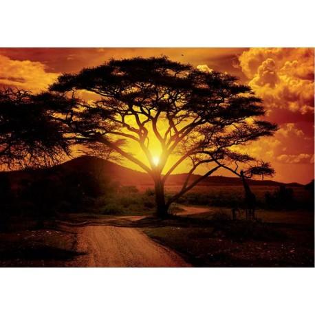 Fotomural Africa 055 Decoas